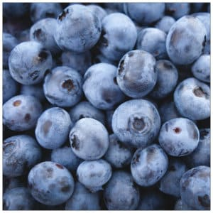 A bunch of ripe blue blueberries - image by jeremy-ricketts-11154 www.unsplash.com