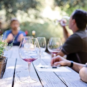 Three blurred people sitting at a large wooden table with several wine glasses