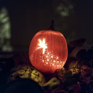 Pumpkin intricately carved with Tinkerbell and little white lights lit up in the dark