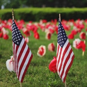 Two small red, white and blue American flags stuck in green grass with red and white flowers in the background.