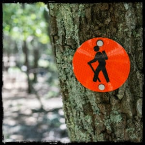 Red circle sign with hiker on a tree in the forest. Image by callistus-ndemo-157554 www.unsplash.com