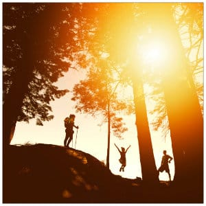 Silhouettes of three hikers with tall trees and sun shining through - image by photo-nic-co-uk-nic-150150 www.unsplash.com