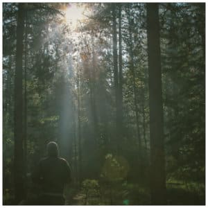 Hiker standing in a wooded area with a ray of sun shining through - image by dustin-scarpitti-1013 www.unsplash.com