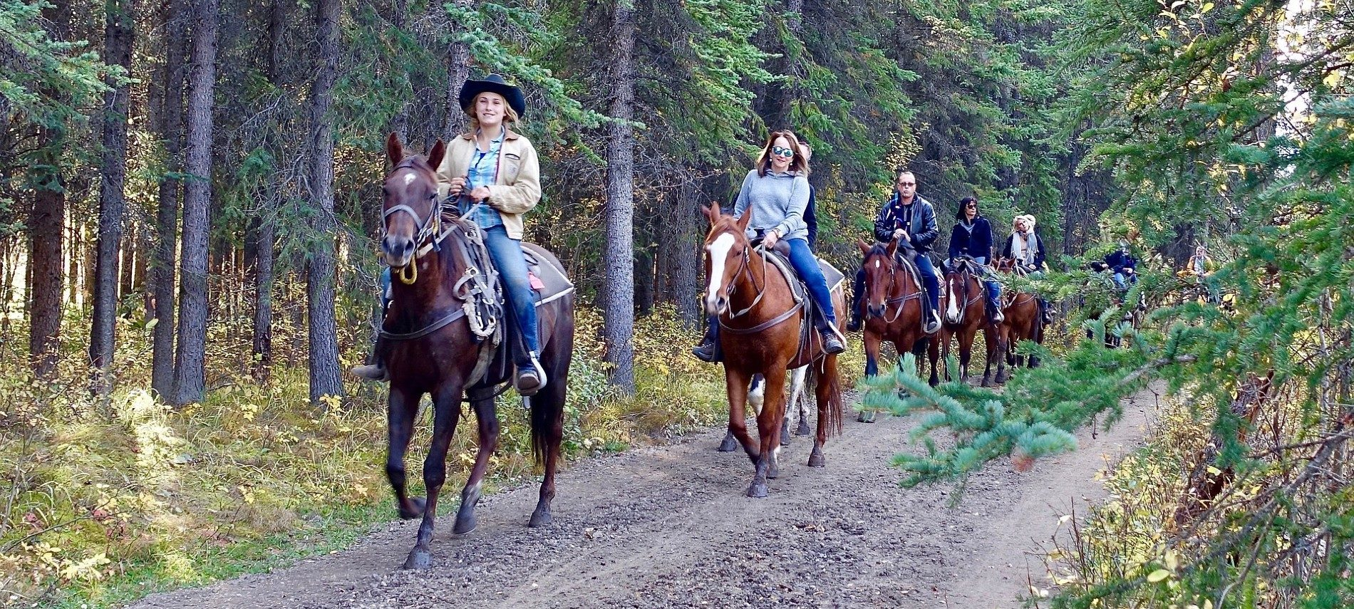 A group of people on brown horses being led by a guide on a trail through the woods