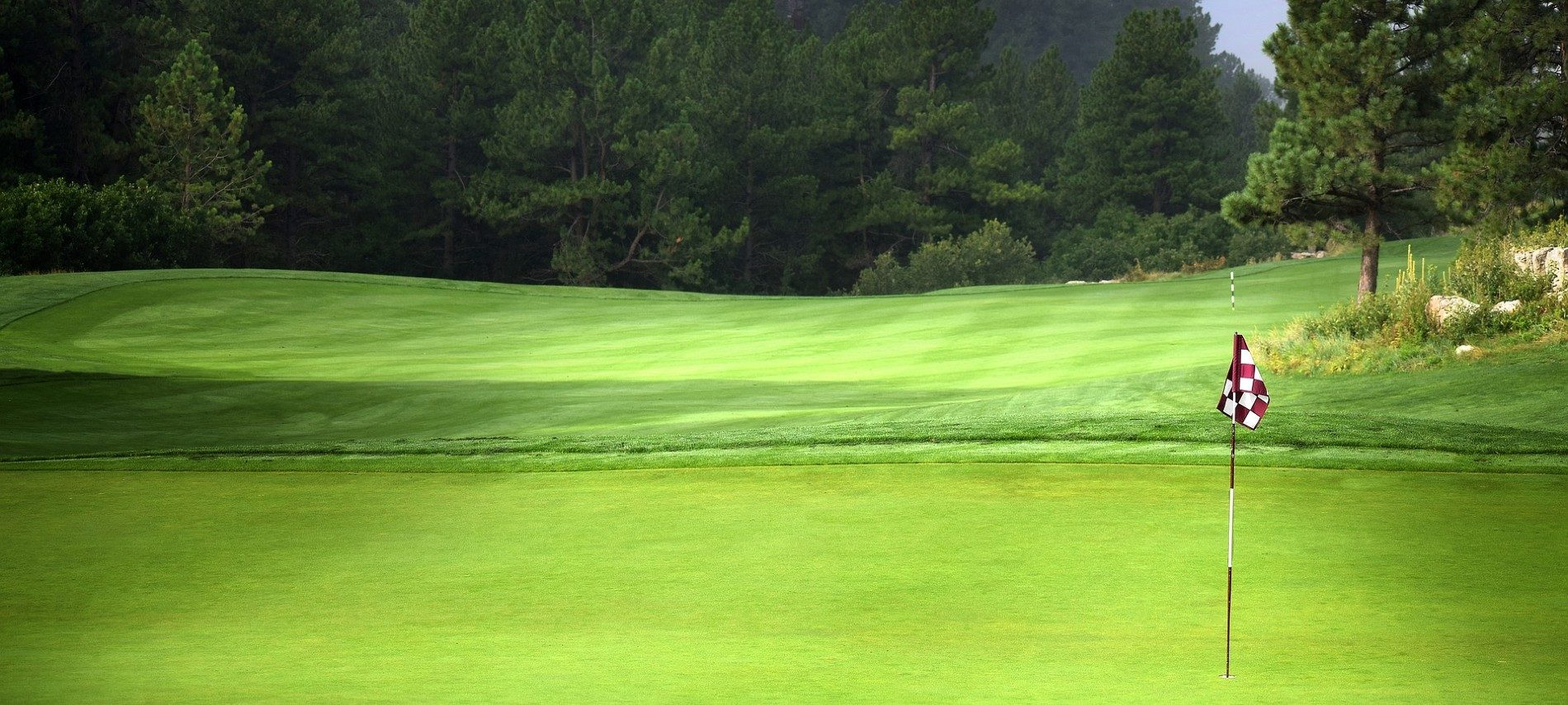 Golf course green with tall checkered flag in the hole and trees in the background