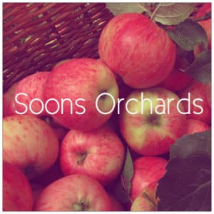 basket of apples with text Soons Orchards