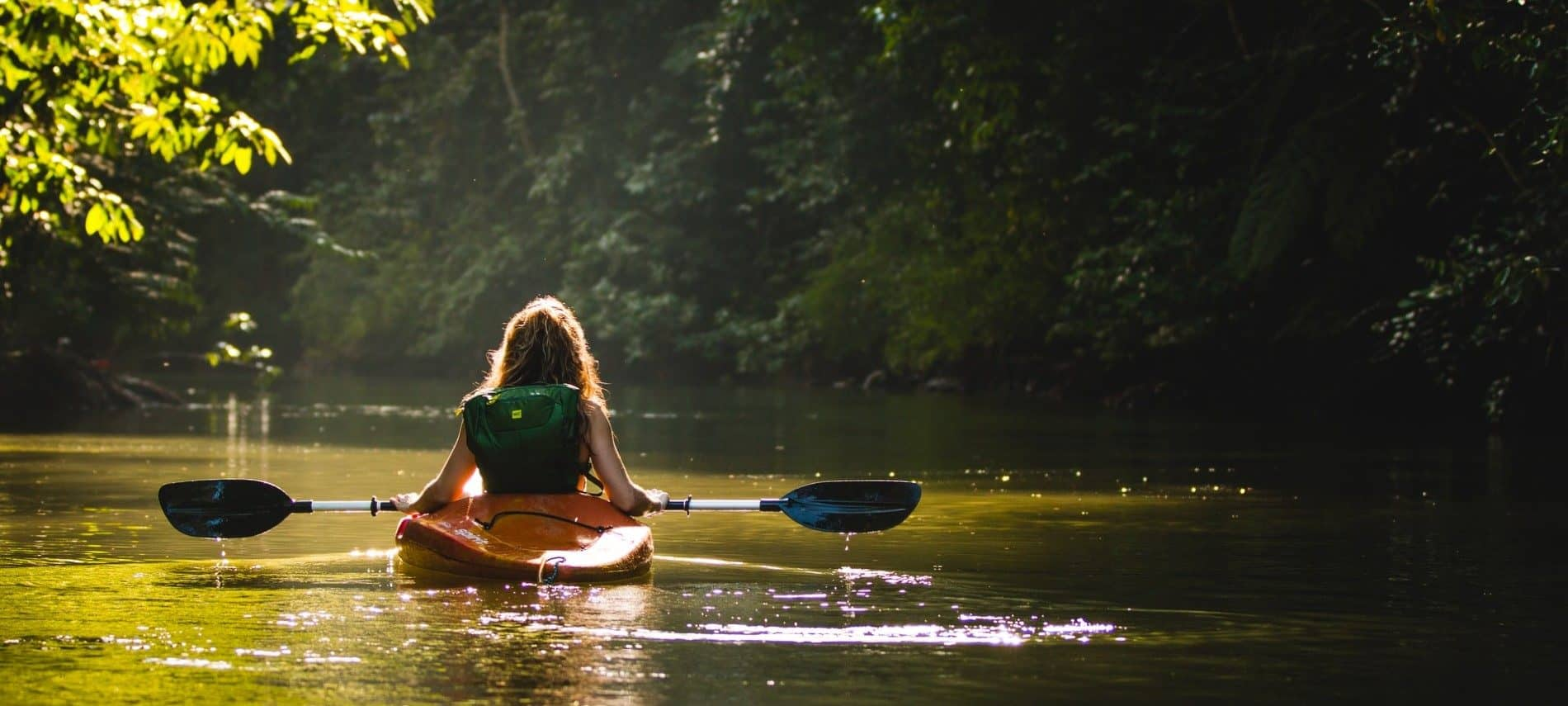 One lone kayaker paddling down a river surrounded by trees and greenery in soft sunlight