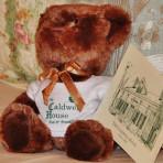 CH Teddy Bear