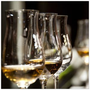A row of clear wine glasses filled half way with white wine against a dark background