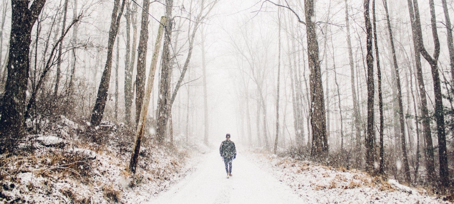 Single trail in the woods with freshly falling snow and one man walking alone